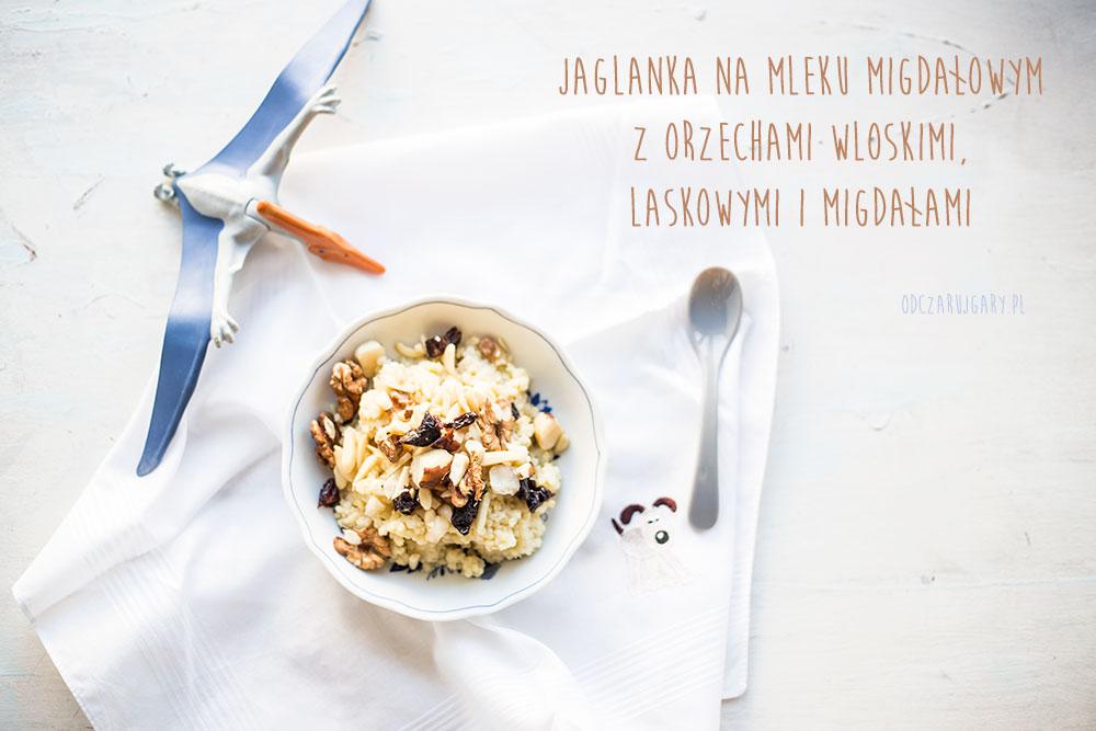 JAGLANKA_NAPIS