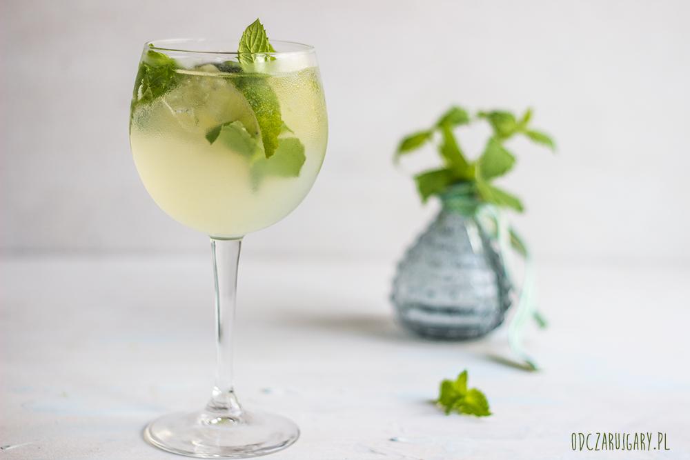 Drink-z-Martini-i-limonką